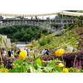 bridgesfriday eden edenproject cornwall