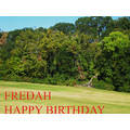 Birthday Wishes Fredah