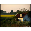 spring landscape nature holland house CH1988