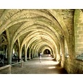 Fountains Abbey 4 * Yorkshire UK - The Cloisters c.1132