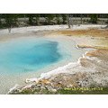 Yellowstone Park Wyoming