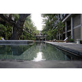 swimmimg pool oasis hotel bali littleollie