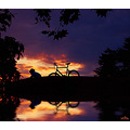 reflectionfriday bicycle sunset water archer