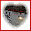 reflectionthursday pond valentine