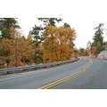 highway autumn san bernardino mountains mjghajar