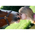 playing with angles horse girl kiss