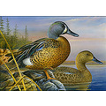 Duck stamp Federal duck stamps Stamp auctions