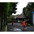 kids kites play anywhere bali littleollie