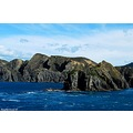 cook strait tory channel newzealand