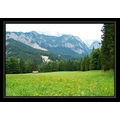 [perfect green]