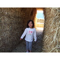 in the hay bale tunnel :)