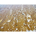 sea sand beach pebbles water