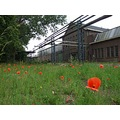 still not finished with the pictures from the munition factory .... so more of that !!  92/95 ba...