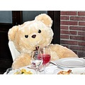 party fun bear TeddyBearFriday