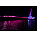 nor cal think pink sundial bridge breast cancer awareness