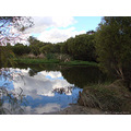 reflectionthursday clouds pond perth littleollie