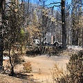 telegraphfire2008 fire homes lost