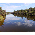 reflectionthursday hotham river bonnington littleollie