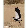 Take- off