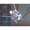 natural history museum london canon g5 april 12th 2006