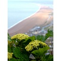 challenge82 Chesil beach