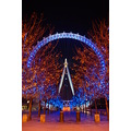 london eye night kolanta