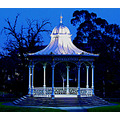 Rotunda bandstand night shot tree