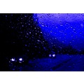 blue rain