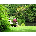 couple gardens bench tranquil