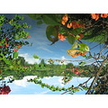 Flowers Water Sky Scenery Nature Reflection