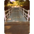 I changed the soft focus and used the 1960's option because it gave the mini boardwalk a historic...