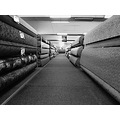 carpet shop mono prague Bohemia