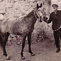 turkey mardin nezihmuin grandfather