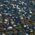 pebbles river rocks wet