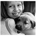 volunteer cute kid puppy dog hold cuddle smile