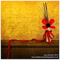 Still life flowers textures fine art ribbon colour red brown yellow