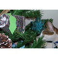 cat christmastree