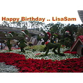Birthday Wishes LisaSam