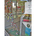 shop window oakland holidayfph reflections decorations streetart holiday