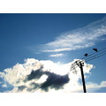 CLOUDS BIRDS LINES