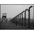 Oświęcim-Brzezinka (Auschwitz-Birkenau) to the memory of the horrific loss of life and sufferin...