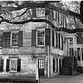 savannah building tree house bw