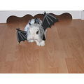 rabbit bunny bat halloween animal funny