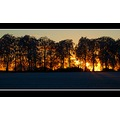 sun sunset trees silhouettes light mendips somerset somersetdreams favesongs