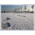 winter snow ice landscape nature holland CH1988