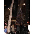 More of the Rockefeller Tree