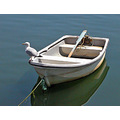 Cornwall Boat Bird Sea Coast Harbour