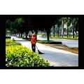 wide avenues with impeccably groomed landscaping on all sides and center, going on for miles