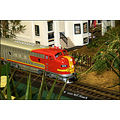 stlouis missouri us train scale MOBOT annual show flowers 010410
