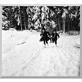 germany oberwolfach snow people memorytuesday germx oberx peopx snowx